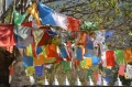 mustang-tiji-festival